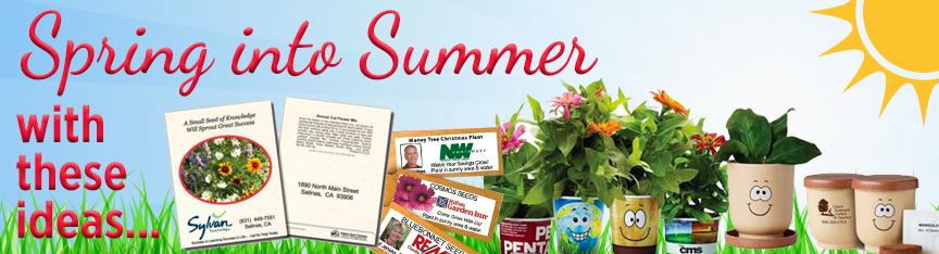 Spring/Summer Ideas
