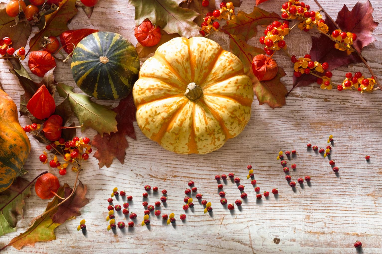 Fall Harvest - PAM341