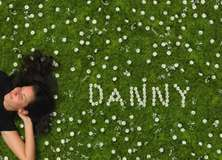 Daisies - PAM104