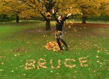 Fall Leaves - PAM009