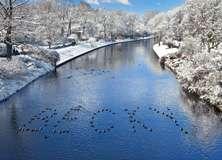 Winter River - PAM315